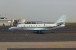 しんさんが、大分空港で撮影した朝日航洋 680 Citation Sovereignの航空フォト(飛行機 写真・画像)