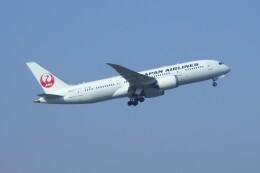 しんさんが、伊丹空港で撮影した日本航空 787-8 Dreamlinerの航空フォト(飛行機 写真・画像)
