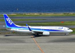 じーく。さんが、羽田空港で撮影した全日空 737-881の航空フォト(飛行機 写真・画像)