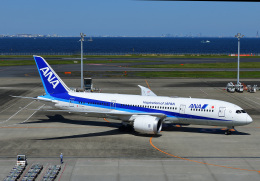 じーく。さんが、羽田空港で撮影した全日空 787-8 Dreamlinerの航空フォト(飛行機 写真・画像)