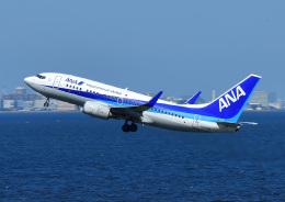 じーく。さんが、羽田空港で撮影した全日空 737-781の航空フォト(飛行機 写真・画像)