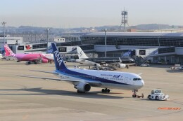 ゆなりあさんが、中部国際空港で撮影した全日空 767-381/ERの航空フォト(飛行機 写真・画像)