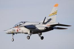 SYさんが、名古屋飛行場で撮影した航空自衛隊 T-4の航空フォト(飛行機 写真・画像)