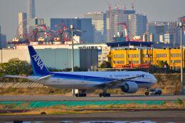 ER_b777logさんが、羽田空港で撮影した全日空 777-381/ERの航空フォト(飛行機 写真・画像)