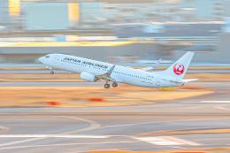 KAMIYA JASDFさんが、羽田空港で撮影した日本航空 737-846の航空フォト(飛行機 写真・画像)