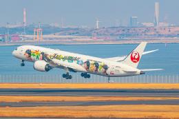 KAMIYA JASDFさんが、羽田空港で撮影した日本航空 787-9の航空フォト(飛行機 写真・画像)