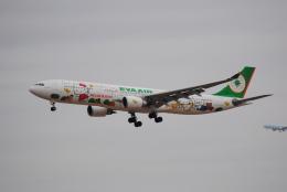 LEGACY-747さんが、成田国際空港で撮影したエバー航空 A330-302Xの航空フォト(飛行機 写真・画像)