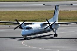 MSN/PFさんが、中部国際空港で撮影した国土交通省 航空局 DHC-8-315Q Dash 8の航空フォト(飛行機 写真・画像)