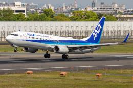 航空フォト:JA65AN 全日空 737-800