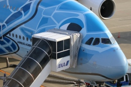 ☆ゆっきー☆さんが、中部国際空港で撮影した全日空 A380-841の航空フォト(飛行機 写真・画像)