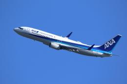 航空フォト:JA64AN 全日空 737-800