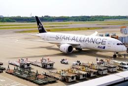 SFJ_capさんが、成田国際空港で撮影した全日空 787-9の航空フォト(飛行機 写真・画像)