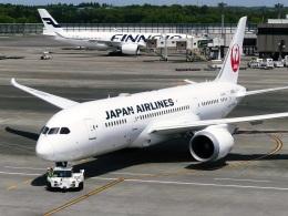 DVDさんが、成田国際空港で撮影した日本航空 787-8 Dreamlinerの航空フォト(飛行機 写真・画像)