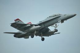 ヨッちゃんさんが、厚木飛行場で撮影したアメリカ海兵隊 F/A-18D Hornetの航空フォト(飛行機 写真・画像)