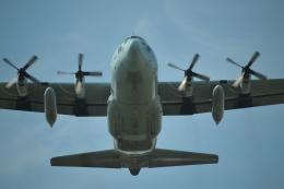 ヨッちゃんさんが、厚木飛行場で撮影した海上自衛隊 C-130Rの航空フォト(飛行機 写真・画像)
