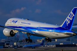 航空フォト:JA819A 全日空 787-8 Dreamliner