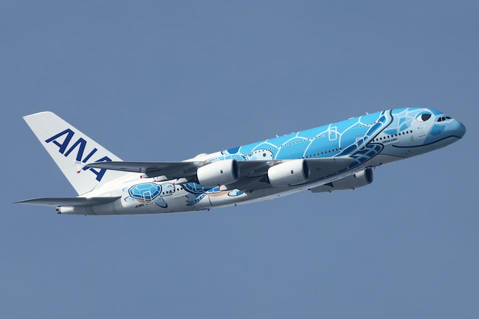 Hariboさんの全日空 Airbus A380 (JA381A) 航空フォト