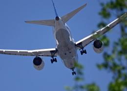 がいなやつさんが、福岡空港で撮影した全日空 787-8 Dreamlinerの航空フォト(飛行機 写真・画像)
