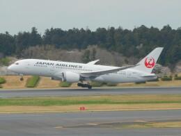 さんまるエアラインさんが、成田国際空港で撮影した日本航空 787-8 Dreamlinerの航空フォト(飛行機 写真・画像)