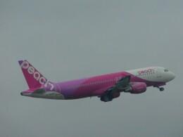 さんまるエアラインさんが、成田国際空港で撮影したピーチ A320-214の航空フォト(飛行機 写真・画像)