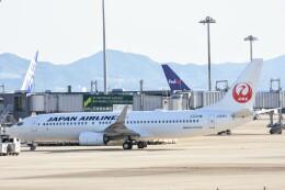 M.Tさんが、関西国際空港で撮影した日本航空 737-846の航空フォト(飛行機 写真・画像)