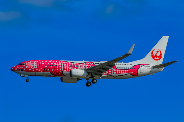 航空フォト:JA06RK 日本トランスオーシャン航空 737-800