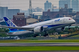 rokko2000さんが、伊丹空港で撮影したボーイング 787-8 Dreamlinerの航空フォト(飛行機 写真・画像)