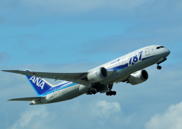 チャーリーマイクさんが、成田国際空港で撮影した全日空 787-8 Dreamlinerの航空フォト(飛行機 写真・画像)