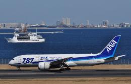 チャーリーマイクさんが、羽田空港で撮影した全日空 787-8 Dreamlinerの航空フォト(飛行機 写真・画像)