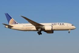 kaeru6006さんが、成田国際空港で撮影したユナイテッド航空 787-8 Dreamlinerの航空フォト(飛行機 写真・画像)