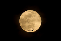 JA1118Dさんが、那覇空港で撮影したスカイマーク 737-81Dの航空フォト(飛行機 写真・画像)