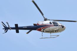 jun☆さんが、東京ヘリポートで撮影したノエビア AS350B3 Ecureuilの航空フォト(飛行機 写真・画像)