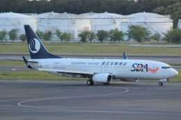 cassiopeiaさんが、成田国際空港で撮影した山東航空 737-85Nの航空フォト(飛行機 写真・画像)