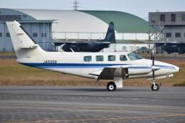 とびたさんが、名古屋飛行場で撮影した日本個人所有 T303 Crusaderの航空フォト(飛行機 写真・画像)