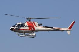 キイロイトリさんが、八尾空港で撮影した朝日航洋 AS350B3 Ecureuilの航空フォト(飛行機 写真・画像)