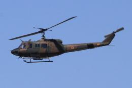 キイロイトリさんが、八尾空港で撮影した陸上自衛隊 UH-1Jの航空フォト(飛行機 写真・画像)