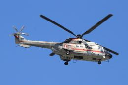 キイロイトリさんが、八尾空港で撮影した朝日航洋 AS332L Super Pumaの航空フォト(飛行機 写真・画像)