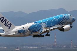 nori-beatさんが、中部国際空港で撮影した全日空 A380-841の航空フォト(飛行機 写真・画像)