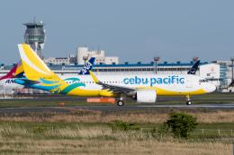 ぎんじろーさんが、成田国際空港で撮影したセブパシフィック航空 A320-271Nの航空フォト(飛行機 写真・画像)