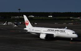 チャーリーマイクさんが、成田国際空港で撮影した日本航空 787-8 Dreamlinerの航空フォト(飛行機 写真・画像)