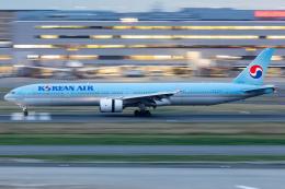 KoshiTomoさんが、羽田空港で撮影した大韓航空 777-3B5の航空フォト(飛行機 写真・画像)
