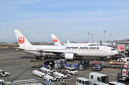 航空フォト:JA612J 日本航空 767-300