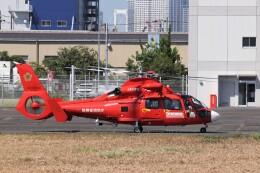 KAZFLYERさんが、東京ヘリポートで撮影した東京消防庁航空隊 AS365N3 Dauphin 2の航空フォト(飛行機 写真・画像)