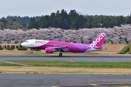 ひこ☆さんが、成田国際空港で撮影したピーチ A320-214の航空フォト(飛行機 写真・画像)
