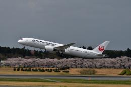ひこ☆さんが、成田国際空港で撮影した日本航空 787-9の航空フォト(飛行機 写真・画像)