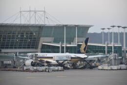 hachiさんが、仁川国際空港で撮影したシンガポール航空 A350-941の航空フォト(飛行機 写真・画像)