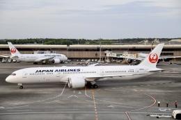 ほたるいかさんが、成田国際空港で撮影した日本航空 787-9の航空フォト(飛行機 写真・画像)