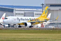 サンドバンクさんが、成田国際空港で撮影したピーチ A320-214の航空フォト(飛行機 写真・画像)