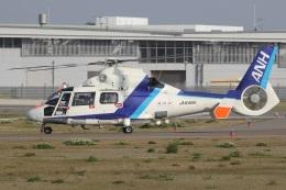 MOR1(新アカウント)さんが、奈多ヘリポートで撮影したオールニッポンヘリコプター AS365N2 Dauphin 2の航空フォト(飛行機 写真・画像)