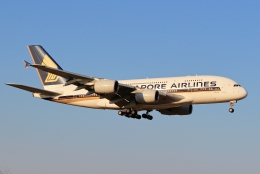 kaeru6006さんが、成田国際空港で撮影したシンガポール航空 A380-841の航空フォト(飛行機 写真・画像)